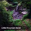 Little Mountain Band - Take The Stairs